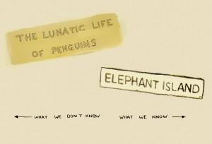 Elefant Island